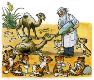 Доктор Айболит лечит тигрят и верблюжат