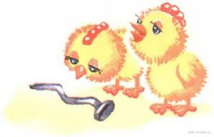Цыплята и гвоздь