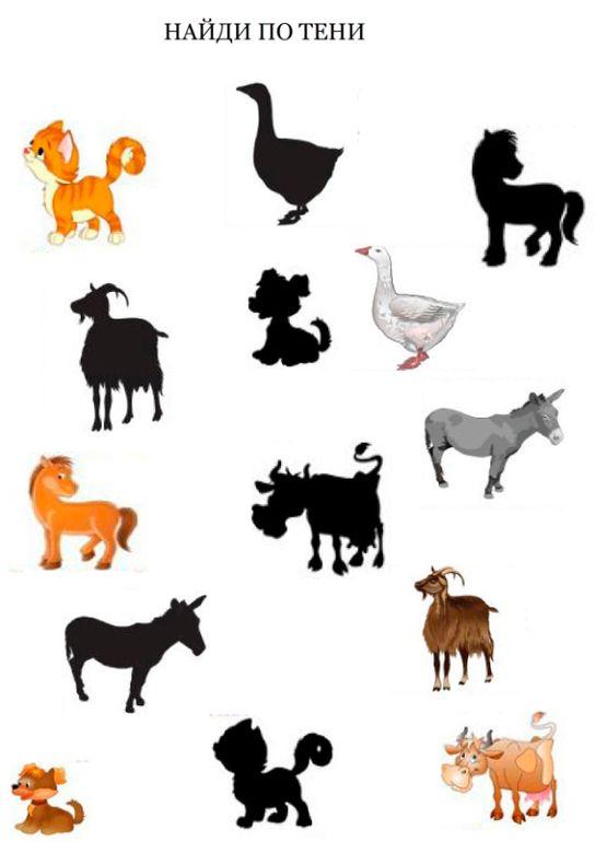 Тень животных - лошадь, гусь, кот