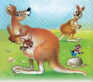 Воробей и кенгуру. Маршак