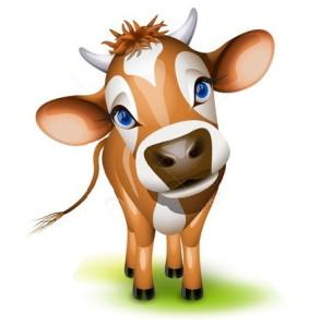 корова смотрит прямо в глаза