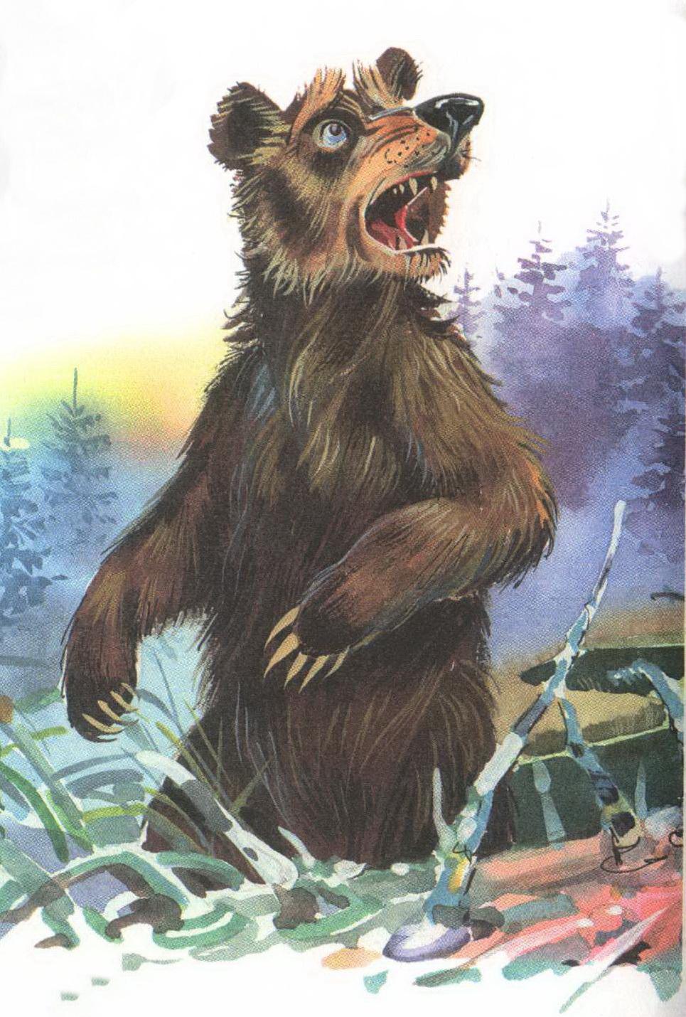 как солнце и медведь картинки очень простой
