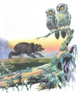 медведица рыщит по болоту