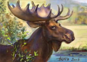 взрослый лось с большими рогами на фоне реки и гор