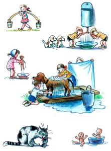 Дети и животные моются