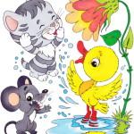 животные умываются картинка