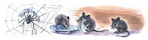 умываются мышата и паучок