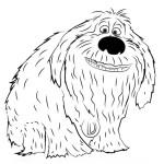 Тайная жизнь домашних животных раскраска