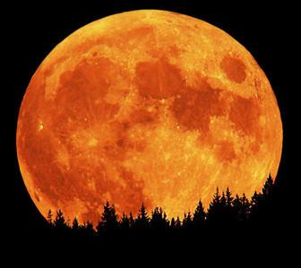 Большая апельсиновая луна Сапгир месяц