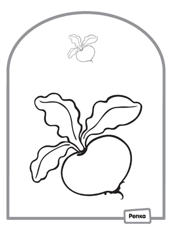 Репка раскраска для малышей 2