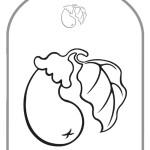 smeshariki-raskraski-5-8 (3)