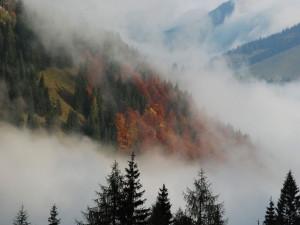 Туман в горах, красивое фото