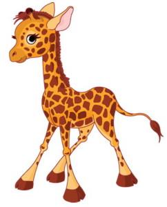 жираф маленький стоит
