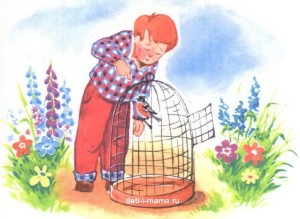 Птица в клетке и мальчик