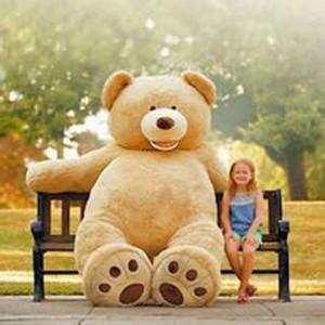 Плюшевый медведь, игрушка