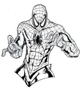 Раскраска торс Человека-паука