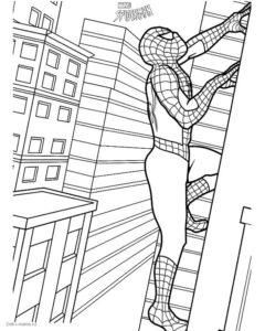 Раскраска Человек-паук в городе — Deti-i-mama.ru