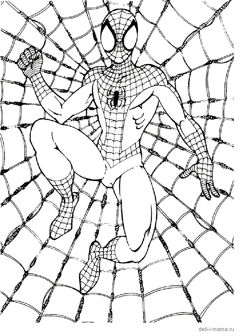 Человек-паук на фоне паутины, раскраска — Deti-i-mama.ru