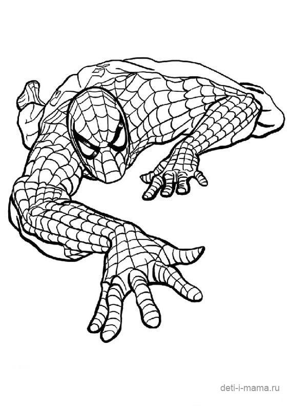 Раскраска Человек-паук крадется