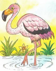 рисунок фламинго