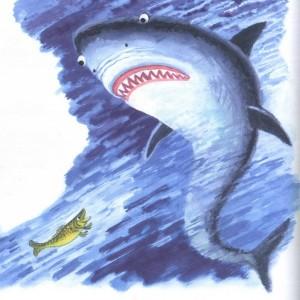 Акула и рыбешка