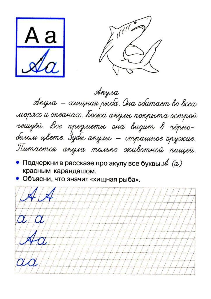 буква А пропись