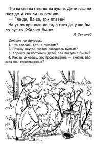 Текст про птиц