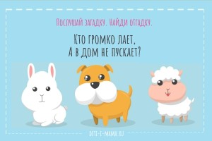 Загадка про собаку