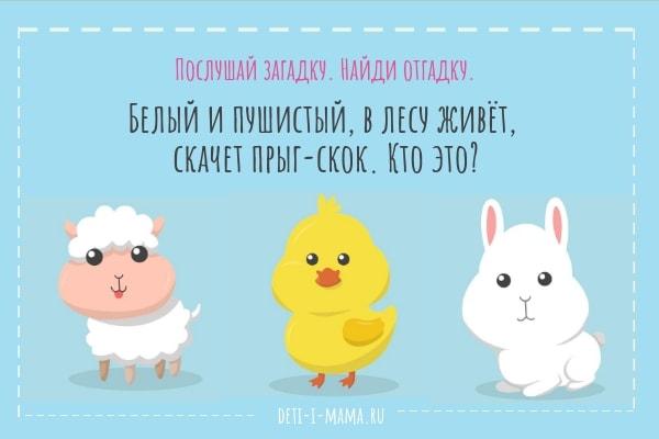 Загадка про зайца с картинками