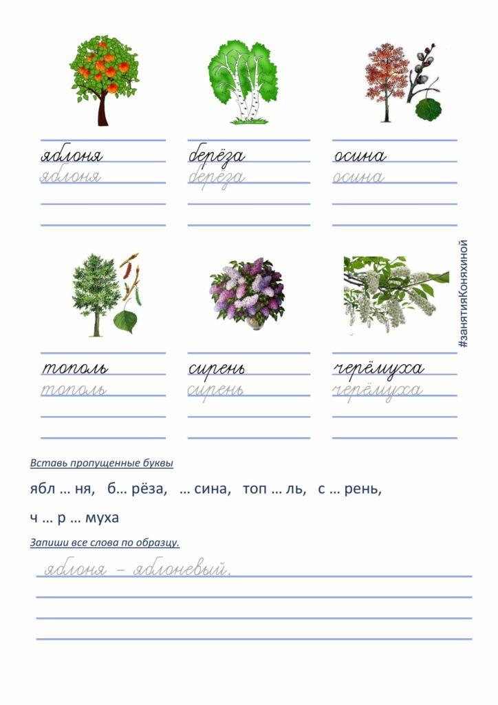 карточки словарный слова 2 класс
